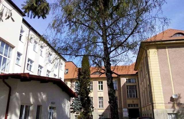 """Work-shop cu participare internațională la Sibiu """"Tratamentul multidisciplinar al cancerului gastric"""""""